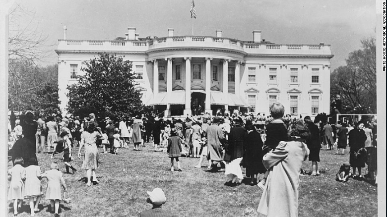 Exclusive: Iconic White House tree to be cut down