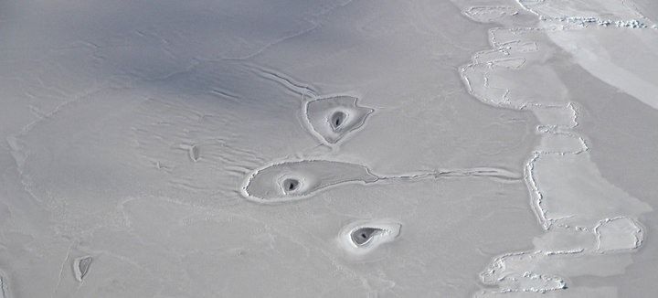 NASA Aircraft Spots Mysterious Circles In Remote Arctic Sea Ice
