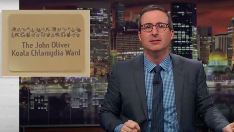 John Oliver Says Goodbye Forever After Koala Chlamydia Ward Is Named After Him