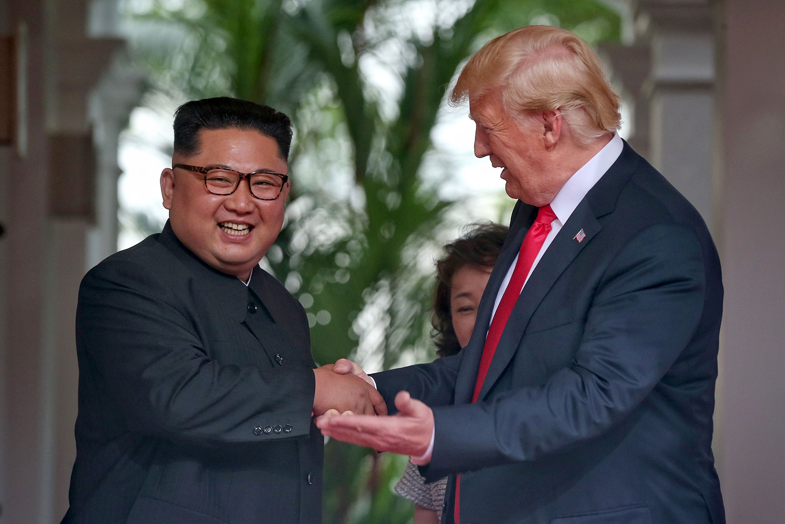 PICTURE SPECIAL: How Trump met Kim