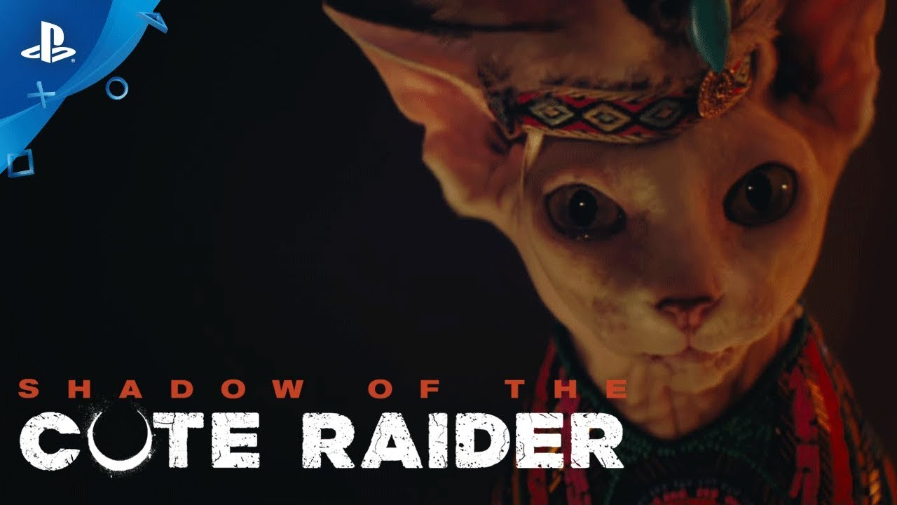 Celebrate National Dog Day with Shadow of the Cute Raider
