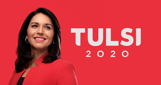 Tulsi Gabbards sister calls out MSNBC for favoring Elizabeth Warren in the debate