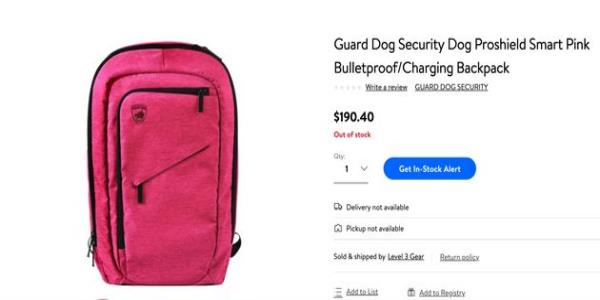 Bulletproof Backpacks Are A Stomach-Churning Back-To-School Trend In US