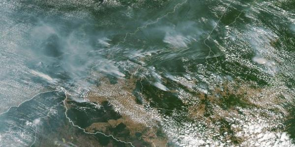 Amazon Rainforest Wildfires: Why Devastating Blazes Are Burning Around The World
