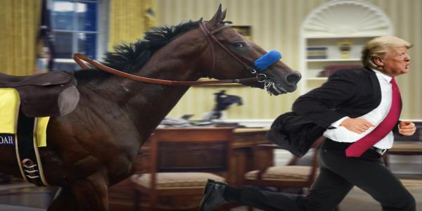 For everyones safety, Seth Meyers would like to unleash American Pharoah in the Oval Office