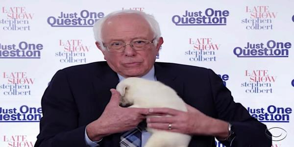 Bernie cuddles a puppy, Warren talks video games, and Buttigieg babysits for Colberts Late Show