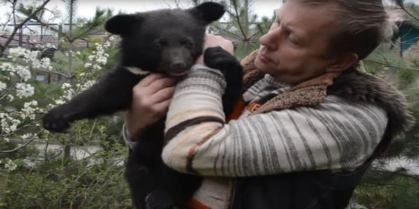 Private zoo owner in Crimea pleads for public to take 30 of his bears so he wont have to euthanise them