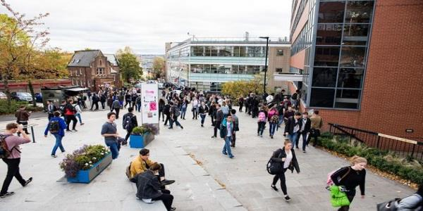 Sheffield University Students Given Anti-Racism Classes To Stamp Out Offensive Comments
