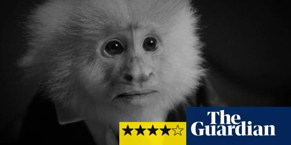 What Did Jack Do? review – David Lynchs Netflix short film is pure, surreal style