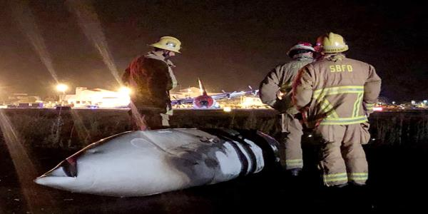 7 escape injury in fiery plane crash at California airport