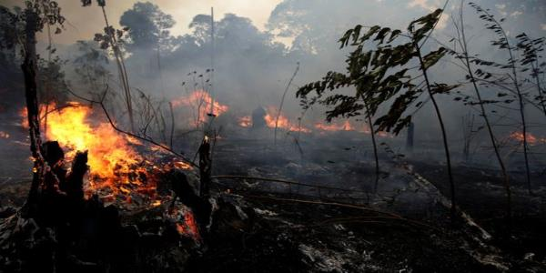 Amazon Rainforest Fires: Brazil Set To Reject $20m G7 Fund