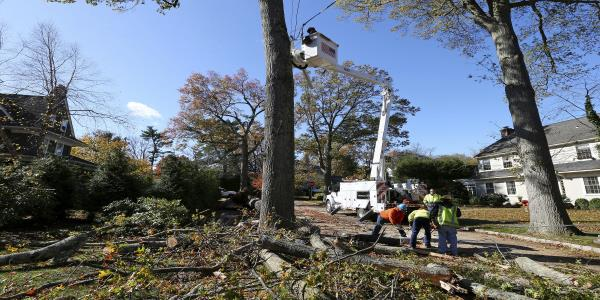 Storms kill 2, knock out power, downs trees on East Coast